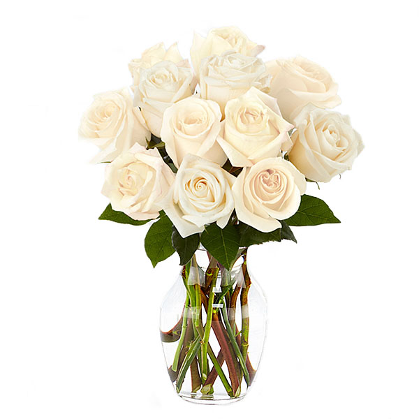 One Dozen White Roses-Same-Day-Flower-delivery-Las Vegas-Henderson-NV