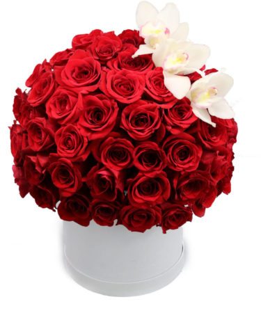 100 Spellbound Red Roses With Orchids-Same-Day-Flower Delivery-Las-Vegas-Henderson-NV