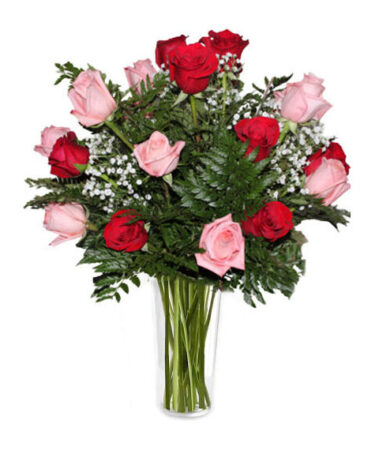 Long Stem Pink and Red-Same-Day-Flower Delivery-Las-Vegas-Henderson-NV Roses