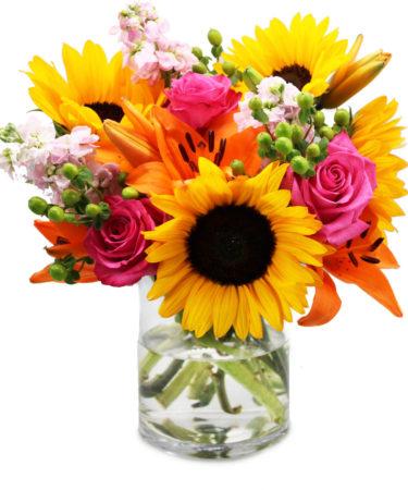 floral-embrace-same-flower-delivery-Las-Vegas-Henderson-NV