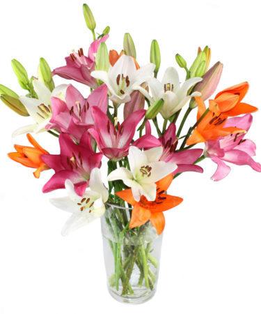 Vibrant Pink, Orange, and White Lilies-Flower-Arangement-Delivery-Las-Vegas-Henderson-NV