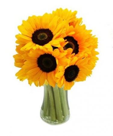 sunflowers-Same-Day-Flower Delivery-Las-Vegas-Henderson-NV