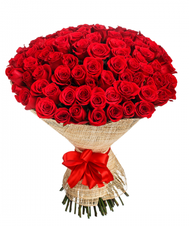 100 Wrapped Roses-Choose Your Rose Color-same-day-flower-delivery-Las-Vegas-Henderson-NV