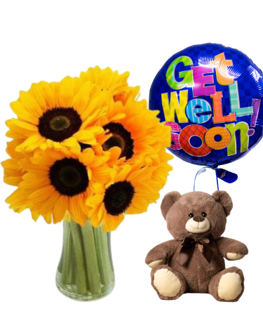 Get Well Package-Same-Day-Flower Delivery-Las-Vegas-Henderson-NV
