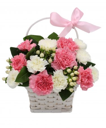 Sweet Carnation Basket-Same-Day-Flower-Delivery-Las Vegas-Henderson-NV