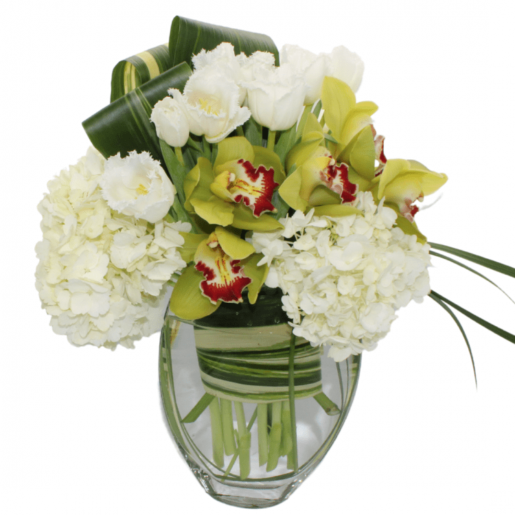 green-cymbidium-orchid-bouquet-tulips-hydrangea-whispers-and-honey-same-day-flower-delivery-in-las-vegas-henderson-2