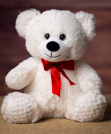 White-plush-cuddly-teddy-bear-red-ribbon-whispers-and-honey-same-day-flower-delivery-in-las-vegas-henderson