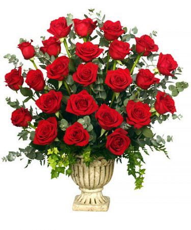 Red Rose Tribute vegas